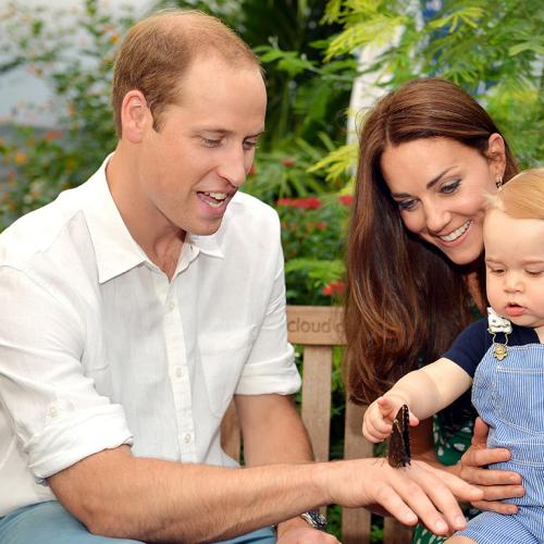 Amazing News For Prince William and Kate Middleton