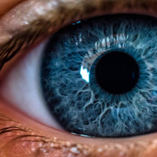 Macula Month: An Eye-Opening Fact For Every Aussie Over 50
