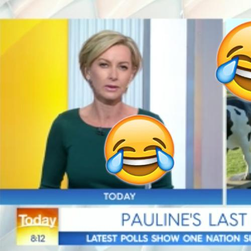 Today Show Ripped To Shreds By Pauline Hanson Live On Air