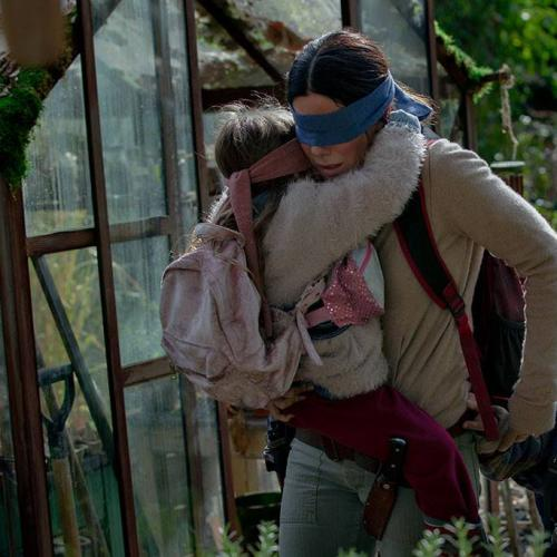 Netflix Issues Danger Warning For The 'Bird Box Challenge'