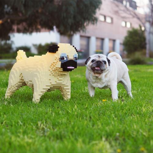 Melbourne Dog Lovers, You Can Get A Free Lifesize LEGO Replica Of Your Pooch