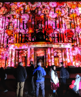 New-Look White Night Hailed A Success