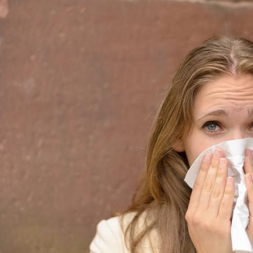 Hayfever sufferers, the worst is yet to come