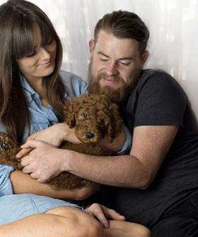 Push For Victorians To Get 'Pet Bereavement Leave' For When Your Pet Dies