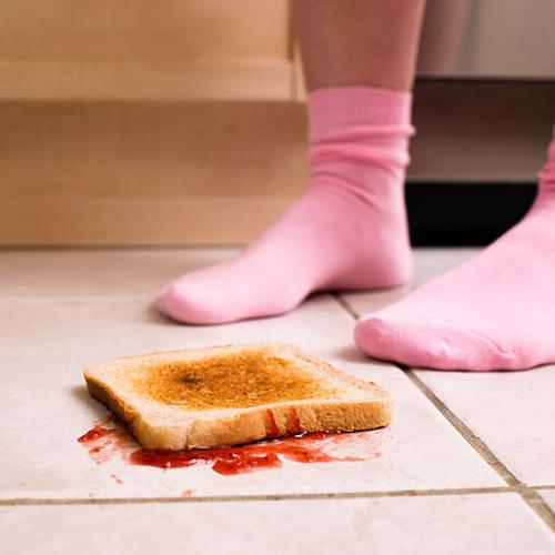 The Truth About The Five-Second Rule Has Been REVEALED!