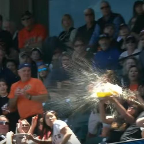 Fan Attempts To Catch Foul Ball, Ruins $95 Of Food And Drink