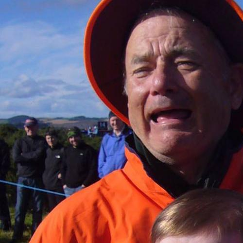 People Can't Tell If This Man Is Bill Murray or Tom Hanks