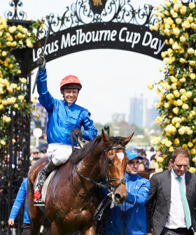 2019 Lexus Melbourne Cup: Key Facts