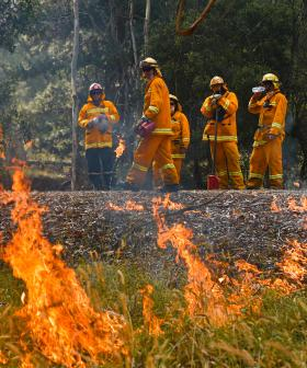 Scammers Door-Knocking For Bushfire Funds