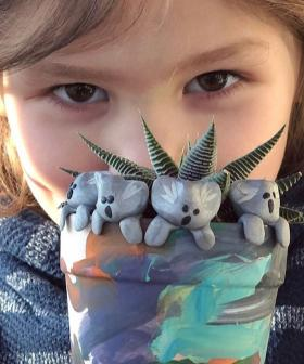 6-Year-Old American Boy's Heartwarming Gesture For Bushfire-Affected Wildlife