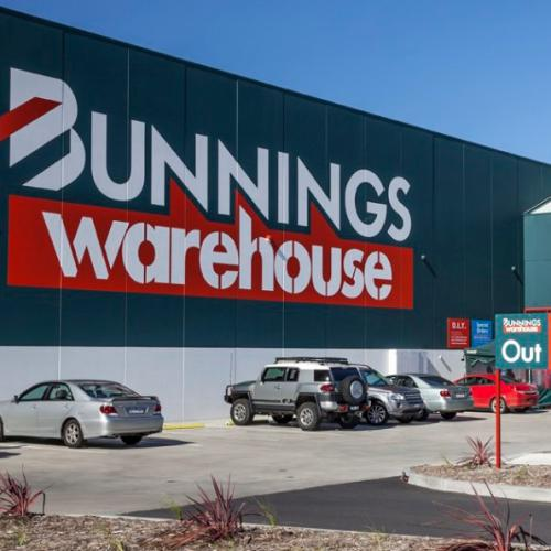 Bunnings Has Started Selling $200 Plants For Less Than $4, So, See You At Bunnings