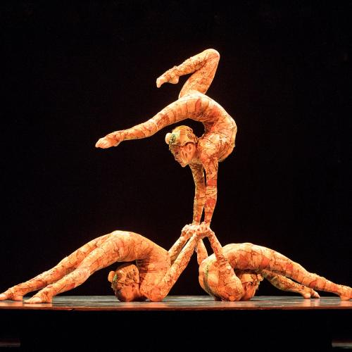Cirque Du Soleil Files For Bankruptcy And Lays Off 95 Per Cent Of Employees Amid COVID-19