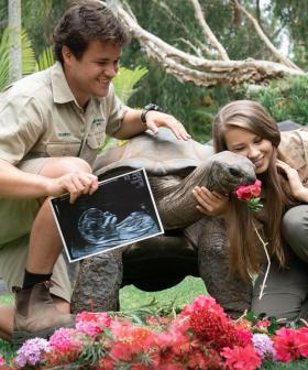 """You Are Our World"": Bindi Irwin And Chandler Powell Reveal The Gender Of Their First Child"
