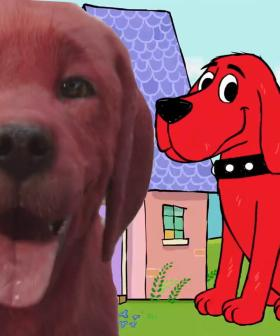 The New 'Clifford The Big Red Dog' Redesign Has Everyone Talking