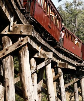 'Leg Dangling' Out of Puffing Billy Steam Train Is Set To Return After Years