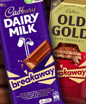 Cadbury Have Just Brought Back The Breakaway Choccy Block