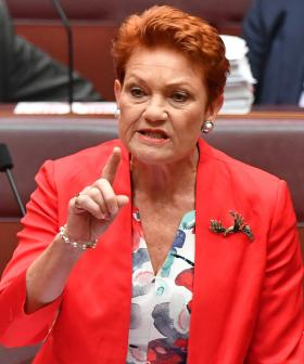 """""""Please Explain"""": Pauline Hanson Forgets Her Own Birthday In The Senate"""