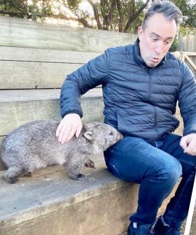 Christian's Latest Australian Animal Drama.... He Was Bitten By An Unlikely Foe!
