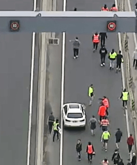 Protesters Block West Gate Melbourne Causing Major Delays, Freeway Closed In Both Directions